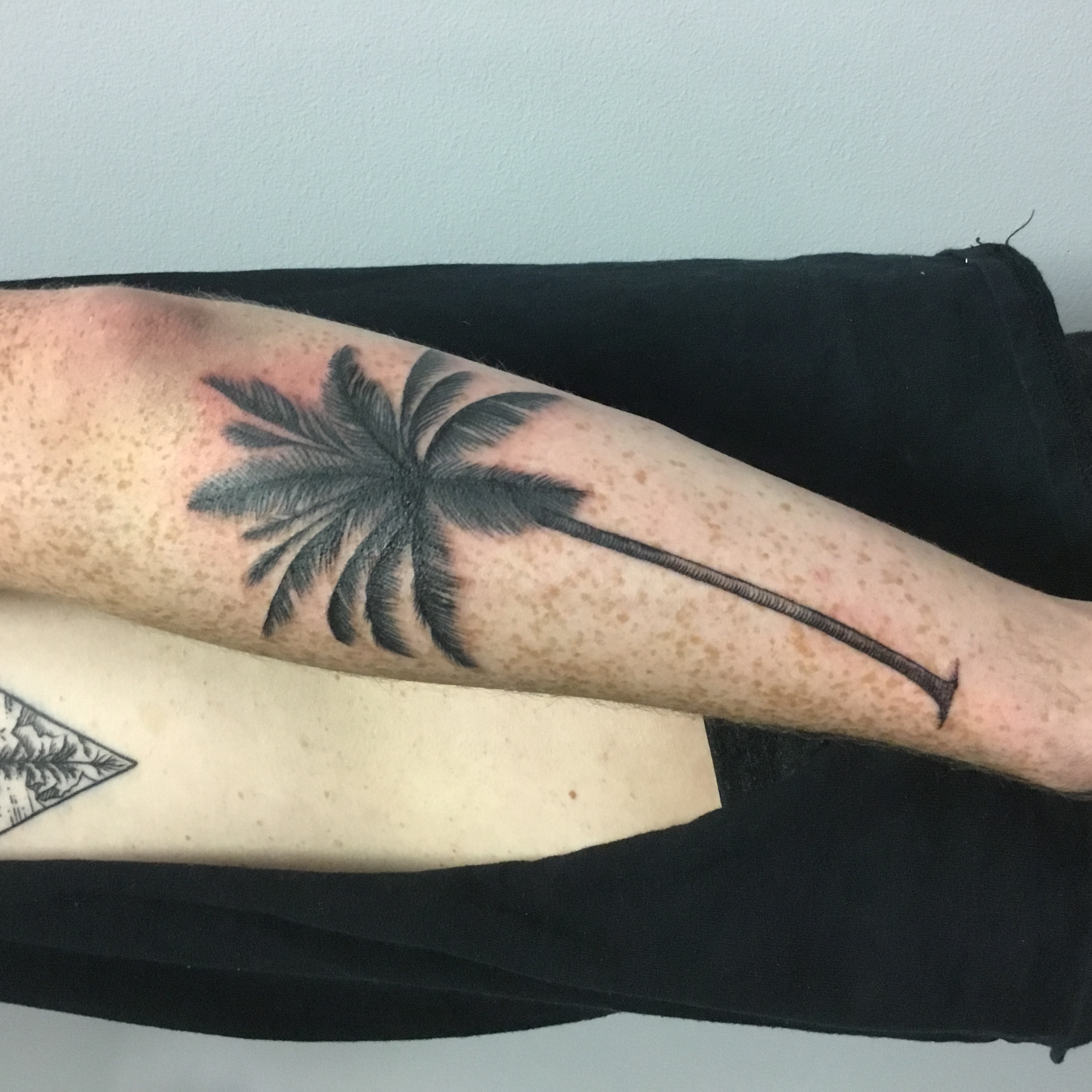 Freshly tattoo palm tree