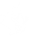 Caire_logo_white.png