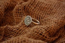 טבעת חשמונאי