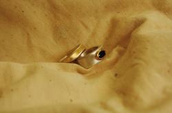 טבעת תיבת עץ (ימין) וטבעת רעלת זהב