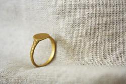 טבעת המרפא בעשבים זהב