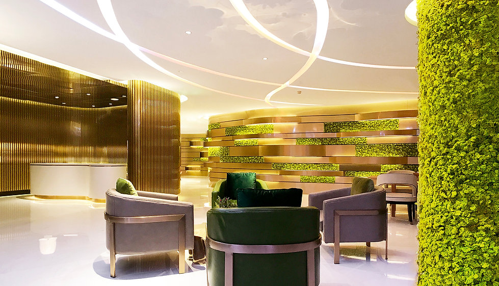 The Sky Club Elements Chamber