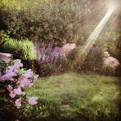 Early morning sun