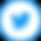 SocialIcons_Social Media-9 copy 2.png