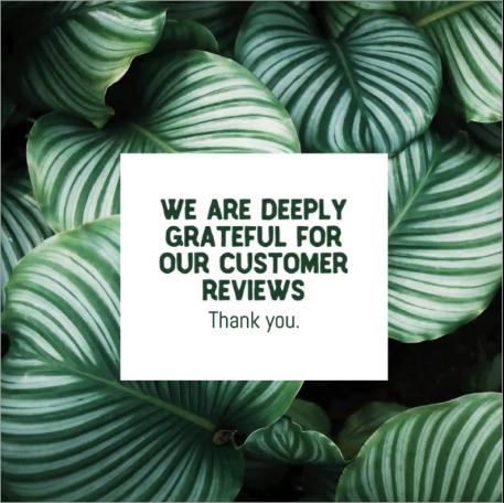 Customer review social post