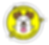 Lens-Creative-Partner-badge-v02-Final_1x