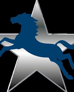Logo C3 sans titre.png