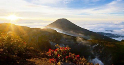 gunung gede sunrise.png