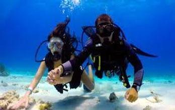 bali diving.jpg