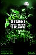 New Flyer Concept (Street Team).jpg