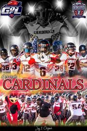 Georgia Cardinals Poster - GDFL