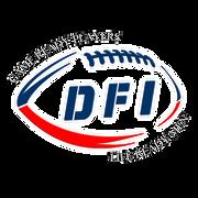 Custom DFI Logo