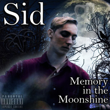 Memory In The Moonlight - Sid (cover).jp