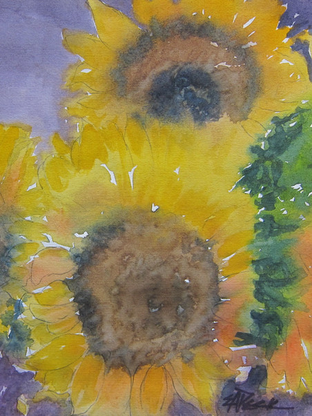 Sunflowers 2 13.75 x 12.50 Watercolor