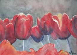 tulips 1200.JPG