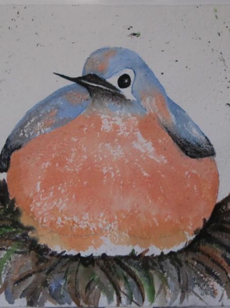 Bluebird 32w x 22 Watercolor & Gouache on Mulberry Paper