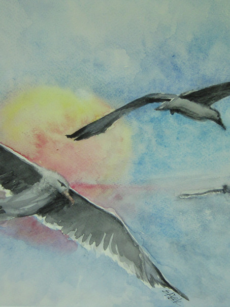 Gulls and Sun 17w x 14h Watercolor