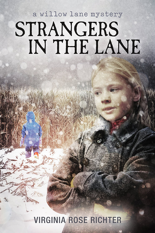 Strangers In The Lane (Paperback)