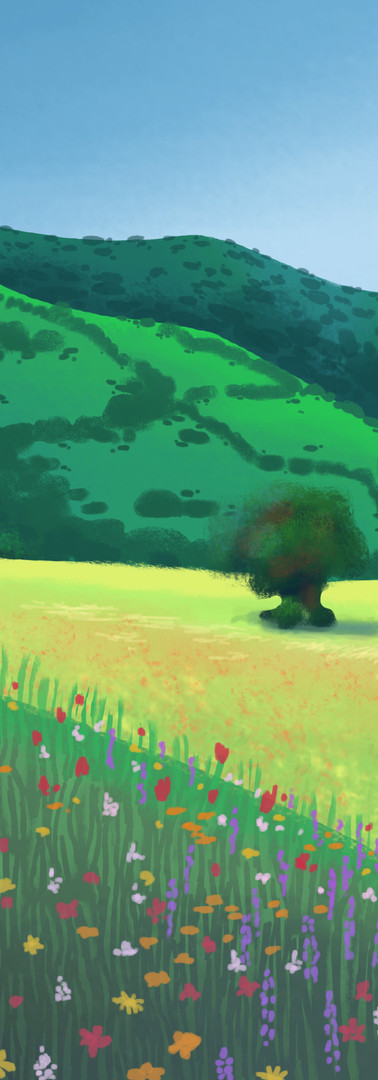 meadow concept 1.jpg