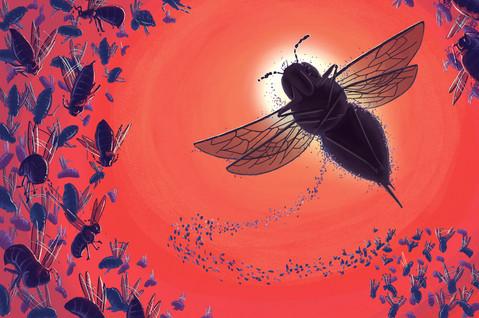 big bee concept2.jpg