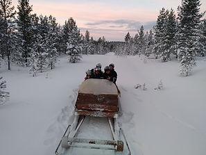 In the sledge to reindeer Reindeerfarm P