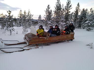 Going to reindeer Reindeerfarm Petri Mat