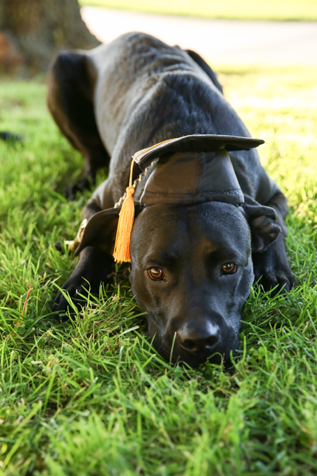 GraduationMay24-77