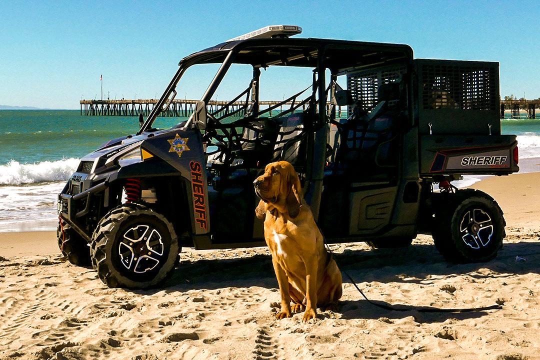 Roscoe with ATV