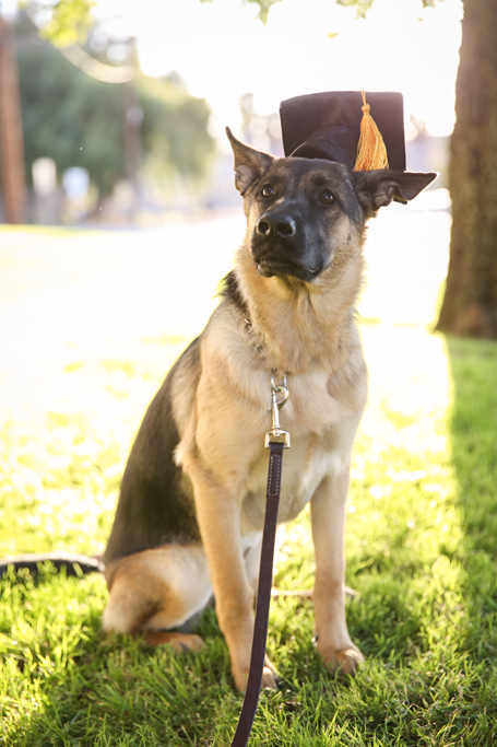 GraduationMay24-28