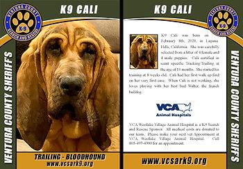 CALI-SAMPLE-CARD.jpg