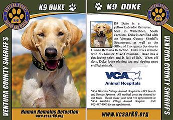 Duke-trading-card.jpg