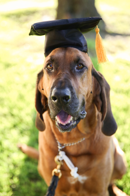 GraduationMay24-41