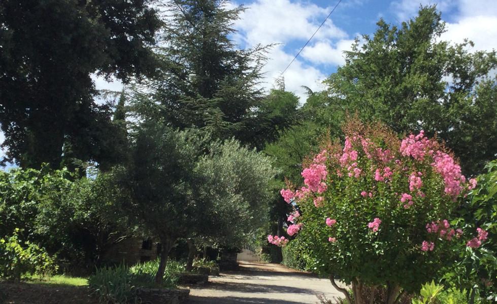 parc-fleuri-location-gite-le-petit-Vialto