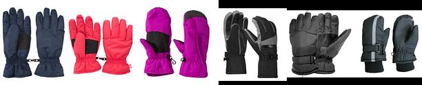 Ski Gloves assorted.png
