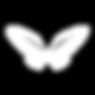 mariposa transparente.png