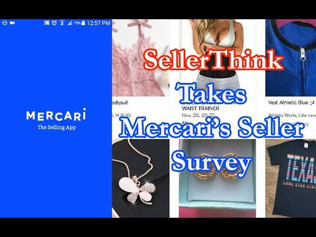 Taking Mercari Seller Survey 2019.jpg