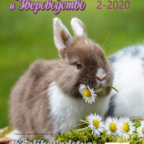 Журнал №2-2020