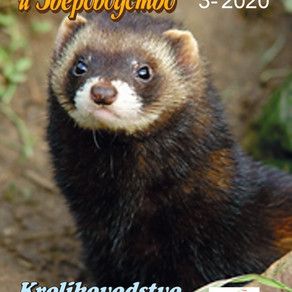 Журнал №3-2020