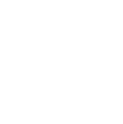 Painted Plate.png