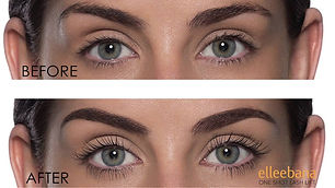 Elleebana before and after.jpg