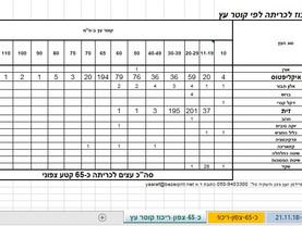 מכרז 39 /19  כביש 65 נתיבי ישראל כריתת אלפי אקליפטוסים