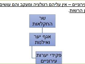 הבעיה עם פקידי יערות עירונים / ישראל גלון, אוסי בנימין.