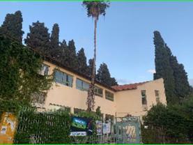ערר בנימינה גבעת עדה 65 עצים במוסדות חינוך לכריתה 26.7.2021