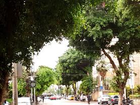 מיטל להבי מסרבת להכניס תושבים למפגש בנושא שינוי המדיניות לתחבורה וחניה בעיר תל אביב יפו.