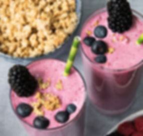 wmfoods.com organic Bulgarian whole milk yogurt fruit and berry smoothies