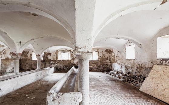 Historischer Kuhstall-Kappendecke