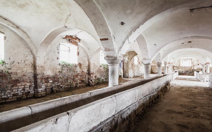 Historischer Kuhstall-alte Tränken