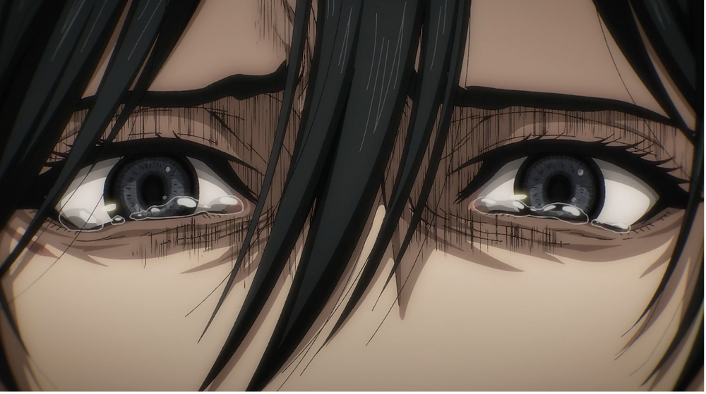 The pain in Mikasa's eyes