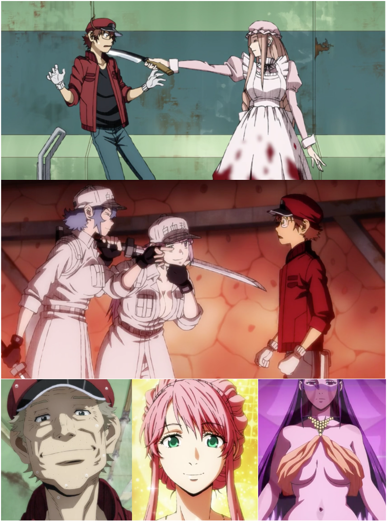 """New acquaintances! A bloody macrophage, junior white blood cells, """"Gramps"""" RBC, a hepatocyte and a Kupffer cell"""