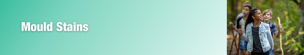 Screenshot 2020-11-04 at 14.35.39.png
